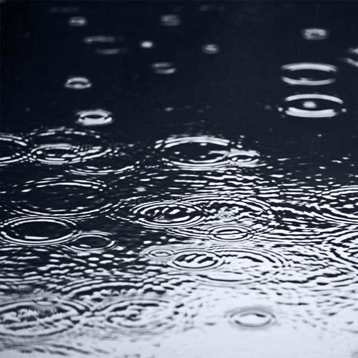 Eaux pluviales Frank Dupuet